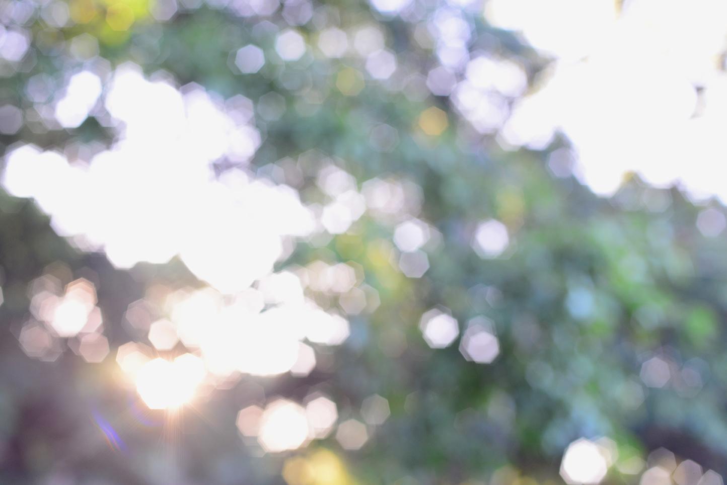 Rayos de sol al atardecer